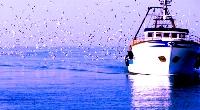 Diminuiscono gli infortuni sul mare
