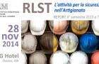 REPORT attività RLST – 28 nov 2014